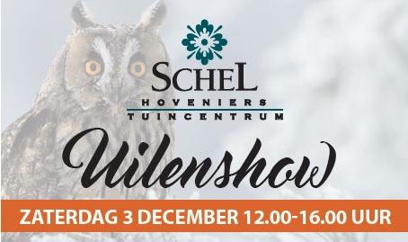 Uilenshow bij Schel uitsnee