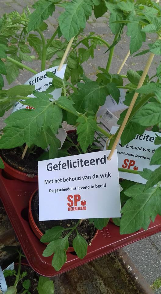 bloemetjes SP1