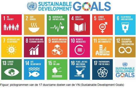 VNsustainabledevelopmentgoals
